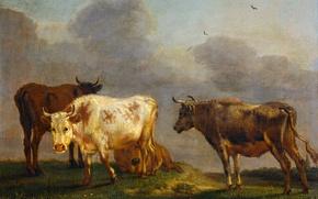 Картинка животные, дерево, масло, картина, Паулюс Поттер, Четыре Коровы на Лугу