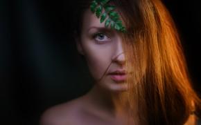 Картинка портрет, взгляд, лицо, чёрный фон, Наташа Новичкова, волосы, листик, Alexander Drobkov-Light