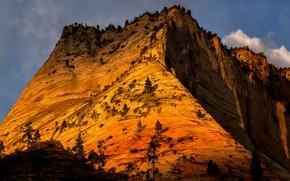 Картинка солнце, облака, деревья, горы, скалы, Юта, США, Zion National Park, Зайон