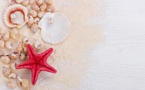 Обои marine, seashells, ракушки, песок, sand, wood, starfish, perl, жемчужина, still life
