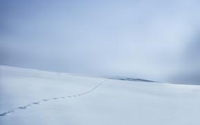 Обои зима, снег, поле, следы