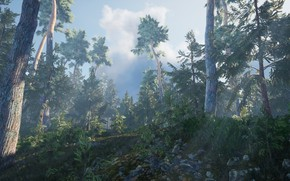 Картинка лес, лучи, туман, страх, игра, ель, утро, сосна, хоррор, Тайга, багульник, Survival Bias