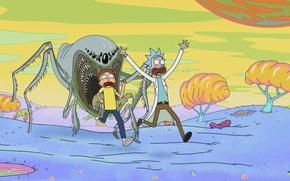 Картинка мультфильм, сериал, мультсериал, Rick and Morty, Рик и Морти