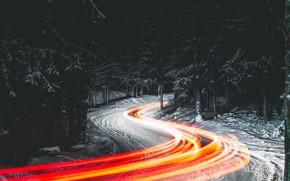 Картинка дорога, лес, ночь, огни