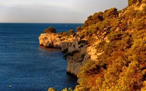 Картинка море, небо, солнце, деревья, скалы, берег, Франция, горизонт, Provence, Calanque, Port Miou