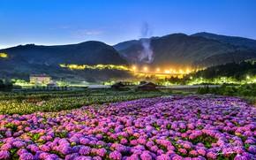 Обои природа, пейзаж, панорама
