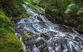 Картинка зелень, вода, скала, водопад