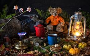 Обои медвежонок, плед, маршмэллоу, папоротник, мох, лампа, горелка, тыквы, ветка, чайник, фонарь, компас, листья, вафли, кружка, ...
