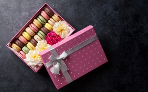 Обои декор, macaroon, flower, box, sweet, печенье, коробка, цветы