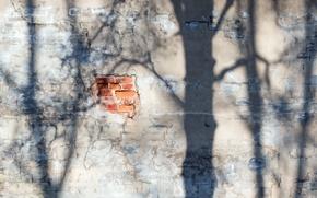 Картинка свет, стена, тень