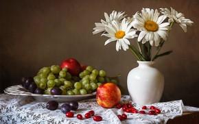 Обои виноград, яблоки, скатерть, сливы, натюрморт, ромашки, тарелка, стол, цветы, ваза