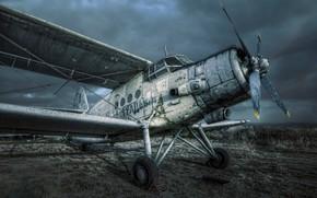 Обои самолёт, An-2, Antonov