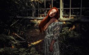 Картинка девушка, поза, настроение, платье, рыжая, рыжеволосая, длинные волосы, Hakan Erenler, Виктория Белова