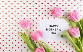 Картинка цветы, flowers, spring, tender, tulips, тюльпаны, pink, fresh, mother's Day, розовые