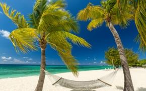 Картинка песок, море, пляж, небо, солнце, облака, тропики, пальмы, побережье, остров, горизонт, гамак, Grand Cayman