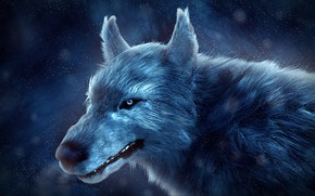 Картинка зима, снег, волк, by IkyuValiantValentine, Valiant Valentine