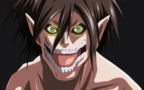 Картинка anime, asian, manga, japanese, asiatic, Shingeki no Kyojin, Attack On Titan, shounen, 025