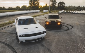 Обои Dodge, Challenger, Black, White, America, Sight