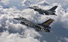 Картинка Fighting, Falcon, F-16AM