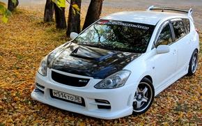 Картинка машина, осень, листья, тюнинг, белая, white, Toyota, спереди, tuning, JDM, Blitz, JDM Style, Toyota Caldina, ...