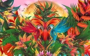 Обои птицы, узор, симметрия, краски