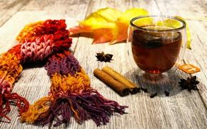 Картинка листья, чай, шарф, корицa