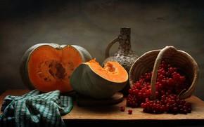 Картинка осень, тыква, кувшин, натюрморт, калина, ноябрь
