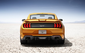 Картинка car, Mustang, Ford, Ford Mustang, desert, yellow, horse, stallion, sabaku, Ford Mustang V8 GT, Ford …