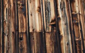 Картинка black, wood, brown, pattern