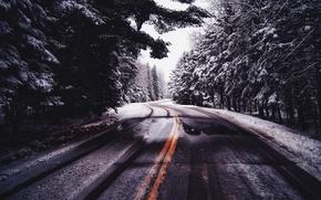 Обои зима, лес, холод, дорога, природа