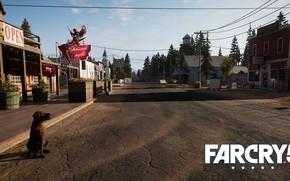Картинка дорога, собака, Far Cry 5