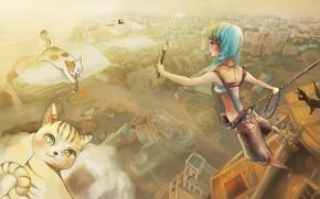 Картинка облака, девочка, котята, кисть, художница, голубые волосы, вид сверху, art, панорама города, Zakuroishi Kida