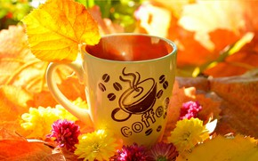 Картинка Цветы, Осень, Листья, кружка, Fall, Flowers, Autumn, Leaves