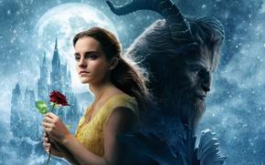 Обои rose, hana, blonde, Beauty Beast, lion, cinema, Emma Watson, film, Disney, monster, love, castle, goat, ...