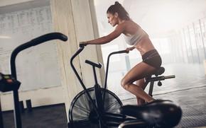 Картинка woman, fitness, training, fixed chair