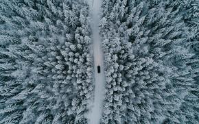Обои лес, машина, деревья, дорога, природа, зима, снег, вид сверху