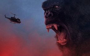 Обои King Kong, cinema, movie, gorilla, fang, film, angry, strong, fury, Kong, Kong: Skull Island, Skull ...