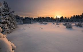 Обои закат, лес, Финляндия, зима, снег, Finland