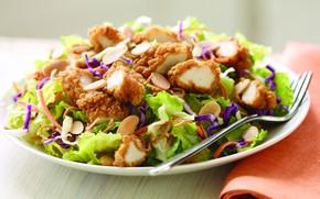 Картинка зелень, тарелка, мясо, капуста, салат