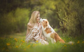 Обои собака, цветы, боке, настроение, девушка, лужайка, одуванчики, дружба, друзья, трава, плед, весна