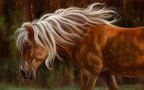 Обои конь, лошадь, масло, арт, акварель, карандаш, живопись, лошадка, гуашь, wallpaper., изображение painting, холка свет природа