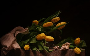 Картинка букет, тюльпаны, натюрморт, цветы