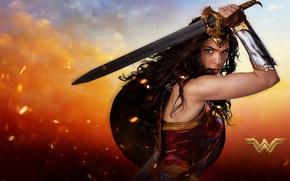 Обои fire, Diana, shield, blade, League of Justice, DC Comics, cinema, warrior, film, gauntlet, armor, Themyscira, ...