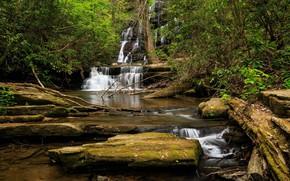 Обои лес, ручей, камни