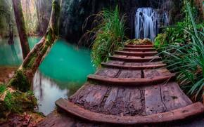 Обои лес, трава, скалы, вода, Каталония, деревья, водопад, мостик