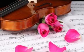 Картинка ноты, скрипка, розы