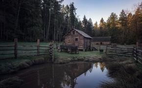 Картинка дом, пруд, телега