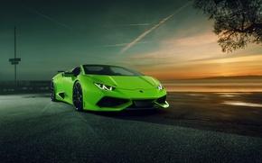 Обои Huracan, кабриолет, спайдер, хуракан, суперкар, Spyder, Novitec Torado, ламборгини, Lamborghini