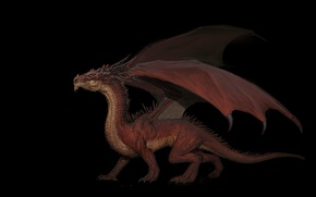 Картинка фентези, дракон, арт, DRAGON, Imthonof u