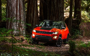 Картинка car, red, forest, Compass, Jeep, vegetation, Jeep Compass